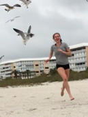 You should never feed seagulls!