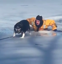 Dramatic rescue of dog that fell through ice