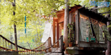 Airbnb treehouse is the most wished for listing