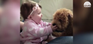Baby girl and her adorable dog can't get enough of each other