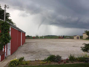 A photo posted on Facebook by a resident shows evidence of a tornado touching down in the Leamington area.  (DAVID EPP/FACEBOOK)