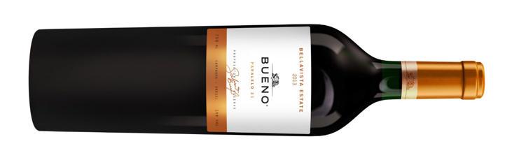 Vinho Galvão Bueno