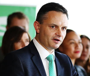 The Green Party put universal Te Reo Maori in all schools on the political agenda in February.