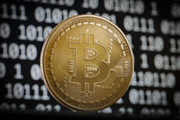 If bitcoin were a stock, it would be a top performer