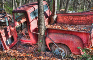 It's not hard to figure out why Old Car City is such a magnet for both amateur and professional photographers. The scrapyard is full of auto gems, some of which have trees and shrubs growing through them.