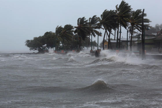 Slide 51 of 51: Palm trees buckle under winds and rain as Hurricane Irma slammed across islands in the northern Caribbean on Wednesday, in Fajardo, Puerto Rico September 6, 2017.  REUTERS/Alvin Baez - RC1465EF3440