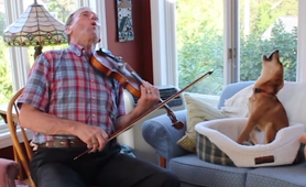 Dog sings on owner violin tune