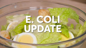 a bowl of food on a plate: E. coli Cases Grow; Romaine Remains a Risk
