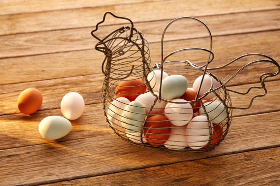Slide 1 of 12: Eggs in a vintage hen shape basket on wood with blue easter white and brown colors