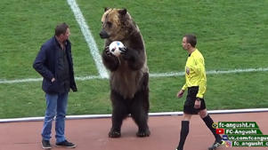 Animal rights groups have condemned the exploitation of a bear for a third division league game in Russia.