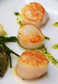 4 Easy Scallop Recipes