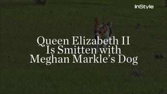 Queen Elizabeth II Is Smitten with Meghan Markle's Dog