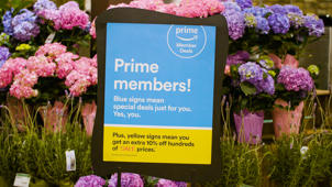 a bunch of pink flowers: Here's Why Groceries Just Got Cheaper For Amazon Prime Members