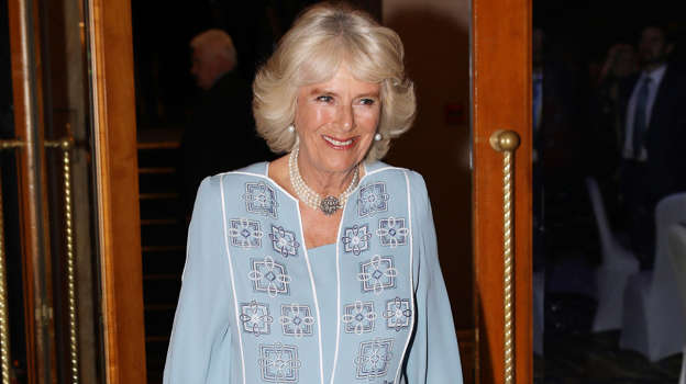 Duchess Camilla Parker Bowles goes viral after winking to cameras during Trump's visit