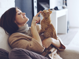 Cat owners are more likely to say that their pets help lower their stress level than dog owners, which might have something to do with the fact that they vent and talk to their cats more than dog owners do with their dogs.