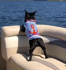 French Bulldog goes for thrilling boat ride