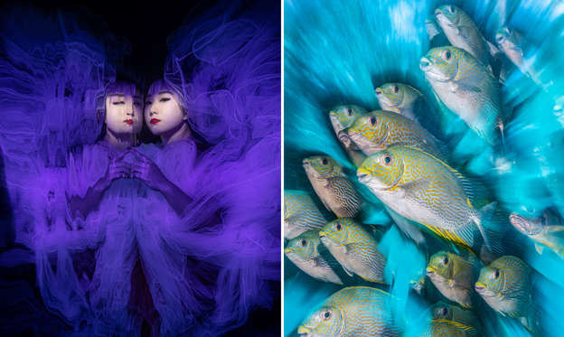 Slayt 1/35: 'Butterfly Effect' by Lilian Koh (Singapore) taken at Tulamben, Bali, Indonesia.; British Underwater Photographer of the Year 2020