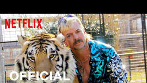 Among the eccentrics and cult personalities in the stranger-than-fiction world of big cat owners, few stand out more than Joe Exotic, a mulleted, gun-toting polygamist and country western singer who presides over an Oklahoma roadside zoo. Charismatic but misguided, Joe and an unbelievable cast of characters including drug kingpins, conmen, and cult leaders all share a passion for big cats, and the status and attention their dangerous menageries garner. But things take a dark turn when Carole Baskin, an animal activist and owner of a big cat sanctuary, threatens to put them out of business, stoking a rivalry that eventually leads to Joe's arrest for a murder-for-hire plot, and reveals a twisted tale where the only thing more dangerous than a big cat is its owner.  Watch Tiger King: Murder, Mayhem and Madness, only on Netflix on March 20: https://www.netflix.com/TigerKing  SUBSCRIBE: http://bit.ly/29qBUt7  About Netflix Netflix is the world's leading streaming entertainment service with over 167 million paid memberships in over 190 countries enjoying TV series, documentaries and feature films across a wide variety of genres and languages. Members can watch as much as they want, anytime, anywhere, on any internet-connected screen. Members can play, pause and resume watching, all without commercials or commitments.  Tiger King: Murder, Mayhem and Madness | Official Trailer | Netflix https://youtube.com/Netflix  A zoo owner spirals out of control amid a cast of eccentric characters in this true murder-for-hire story from the underworld of big cat breeding.