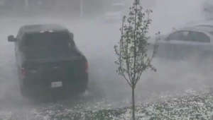 Wild video of giant-sized hailstorm in Canada