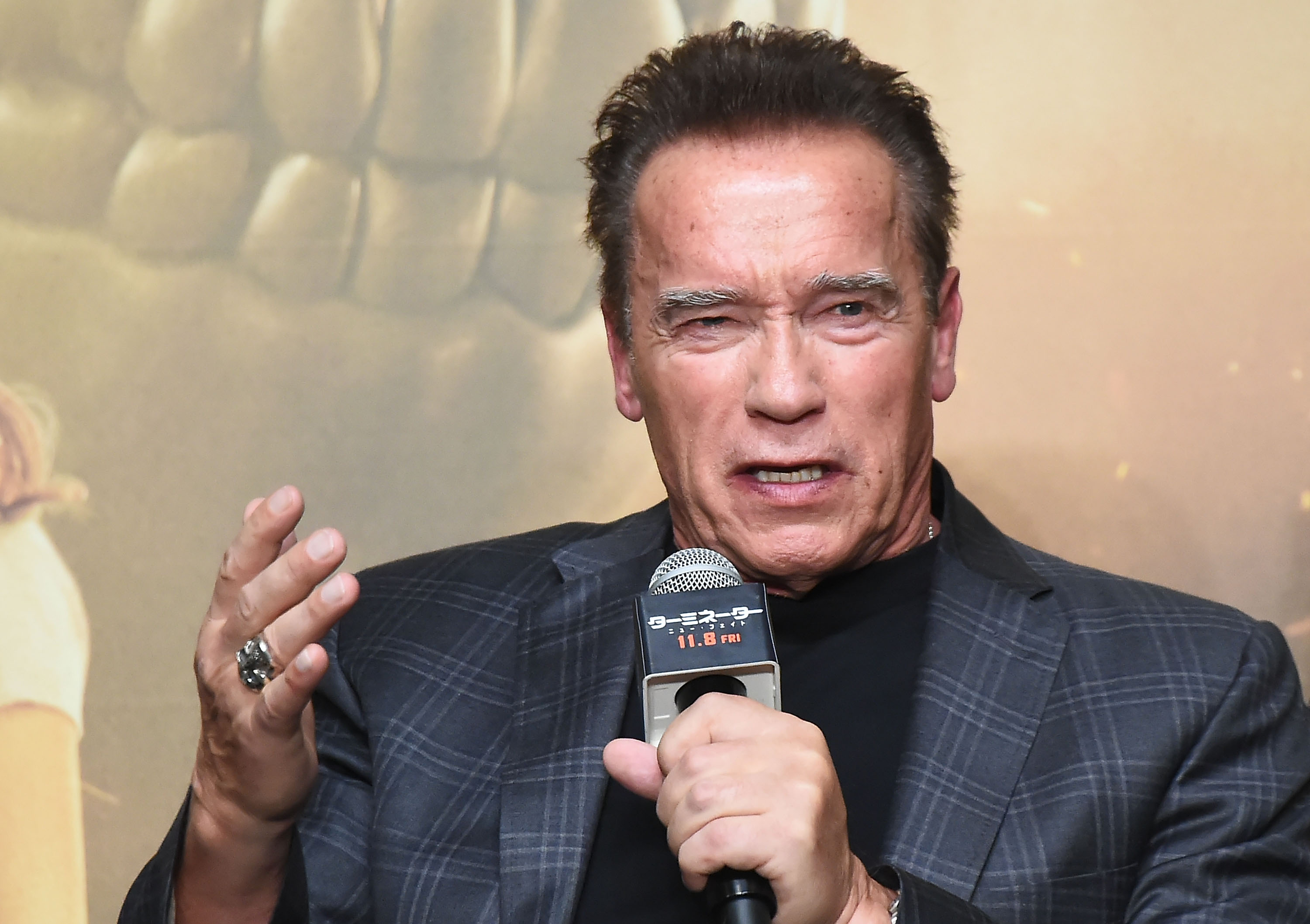 Arnold Schwarzenegger Is Making the Move to a Scripted TV Show