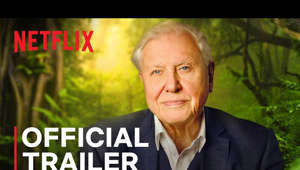 David Attenborough smiling for the camera: In this unique feature documentary, titled David Attenborough: A Life On Our Planet, the celebrated naturalist reflects upon both the defining moments of his lifetime and the devastating changes he has seen. Coming to Netflix October 4 2020, the film addresses some of the biggest challenges facing life on our planet, providing a snapshot of global nature loss in a single lifetime. With it comes a powerful message of hope for future generations as Attenborough reveals the solutions to help save our planet from disaster.   SUBSCRIBE: http://bit.ly/29qBUt7  About Netflix: Netflix is the world's leading streaming entertainment service with 193 million paid memberships in over 190 countries enjoying TV series, documentaries and feature films across a wide variety of genres and languages. Members can watch as much as they want, anytime, anywhere, on any internet-connected screen. Members can play, pause and resume watching, all without commercials or commitments.  David Attenborough: A Life on Our Planet | Official Trailer | Netflix https://youtube.com/Netflix  A broadcaster recounts his life, and the evolutionary history of life on Earth, to grieve the loss of wild places and offer a vision for the future.