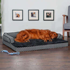 a dog in a living room: FurHaven Comfy Couch Dog Bed