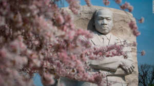 You'll find The Martin Luther King Jr. Memorial on the National Mall between the Lincoln and Jefferson memorials.