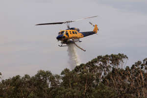 SYDNEY, AUSTRALIA - NOVEMBER 29: Helicopters are seen water bombing an out of control bushfire at Northmead on November 29, 2020 in Sydney, Australia. The Bureau of Meteorology has forecast heatwave conditions in NSW this weekend, with temperatures expected to exceed 40 degrees across the state. (Photo by Jenny Evans/Getty Images): Temperatures Soar Across NSW As Heatwave Hits