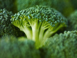 Broccoli isn't just bursting with antioxidants. It also contains a good amount o...