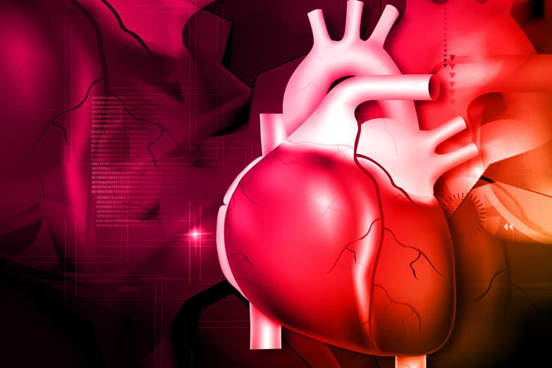 During an average lifetime, the heart will pump nearly 1.5 million barrels of blood. A pumping human heart can squirt blood 9.1m (30ft).