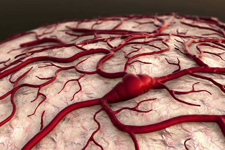 If your arteries, veins and capillaries were laid out end to end they would measure 100,000 km (60,000 miles). That's nearly enough to stretch two and a half times around the planet!
