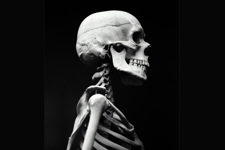 You're born with more than 300 bones but by the time you're an adult you have just 206. This is because some of the bones fuse together.