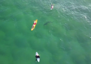 Surfers oblivious as shark lurks below
