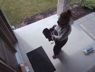 A surveillance camera video showing a woman taking a parcel from a doorstep in London, Ontario