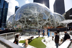 Amazon employees tend to their dogs in a canine play area adjacent to where construction continues on three large, glass-covered domes as part of an expansion of the Amazon.com campus on April 27, 2017, in downtown Seattle. The tallest of the three interconnected spheres, called Amazon Spheres by the company, will be 90 feet high and 130 feet in diameter, and is planned to include a botanic garden of waterfalls and treehouse-like spaces overlooking tropical gardens. The structures are expected to begin being used by employees in early 2018.
