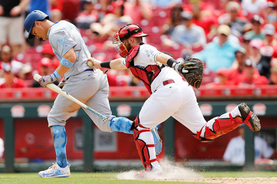 Slide 1 of 24: Tucker Barnhart (16) of the Cincinnati Reds tags out Joc Pederson (31) of the Los Angeles Dodgers at Great American Ball Park on June 18,  in Cincinnati, Ohio.