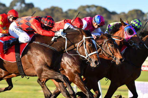 Slide 26 de 36: MELBOURNE, AUSTRALIA - JUNE 07:  Craig Newitt riding Jaminzah winning Race7 during Melbourne Racing at Sandown Lakeside on June 7, 2017 in Melbourne, Australia.  (Photo by Vince Caligiuri/Getty Images)