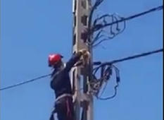 Rescuers save stranded kitten from power lines