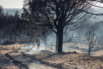A couple walk between charred trees near the access to the Cuesta Maneli beach after a forest fire near Mazagon in southern Spain, Monday June 26, 2017. A forest fire in southern Spain has forced the evacuation of 1,000 people and is threatening Donana National Park, one of Spain's most important nature reserves and a UNESCO World Heritage site since 1994, and famous for its biodiversity, authorities said Sunday.