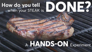 Can You Use Your Hand to Check When Meat Is Done?