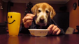 "Hilarious Golden Retriever eats with ""human hands"""