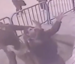 Falling boy caught by policeman