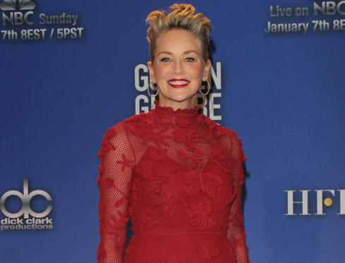 40 枚のスライドの 1 枚目: NEW YORK, NY - JANUARY 16:  Sharon Stone attends the Hollywood Reporter TV Talks & 92Y Present: HBO's 'Mosaic' on January 16, 2018 in New York City.  (Photo by John Lamparski/Getty Images)