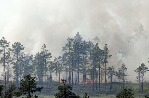 Διαφάνεια 1 από 33: CAPTION: Fire burns at a forest in Korskrogen near Ljusdal, Sweden on July 25, 2018. (Photo by Jonathan NACKSTRAND / AFP) (Photo credit should read JONATHAN NACKSTRAND/AFP/Getty Images)