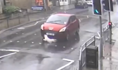 Moment a lucky dog miraculously survives being hit by a car