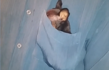 Moment a tiny puppy burrows itself in a shirt pocket out of shyness