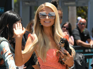 UNIVERSAL CITY, CA - JUNE 28:  Paris Hilton poses with her dog at 'Extra' at Universal Studios Hollywood on June 28, 2018 in Universal City, California.  (Photo by Noel Vasquez/Getty Images)