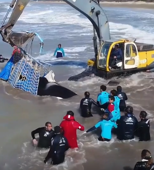 Watch: Orca returned to sea in 20-hour rescue