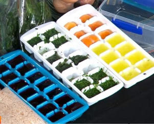 Freeze herbs, stocks and wine in ice cube trays