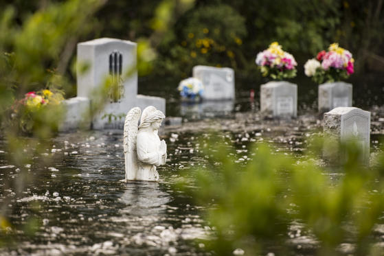 Slide 4 of 105: BUCKSPORT, SC - SEPTEMBER 26: A cemetery is inundated by floodwaters from the Waccamaw River caused by Hurricane Florence on September 26, 2018 in Bucksport, South Carolina. Nearly two weeks after making landfall in North Carolina, river flooding continues after Florence in northeastern South Carolina. (Photo by Sean Rayford/Getty Images)